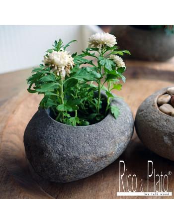 "Online Carved river stone flower pot ""Flora"" I Rico & Plato"