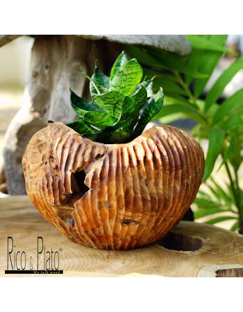 Teak cache pot ''Lily'' in Ricoplato